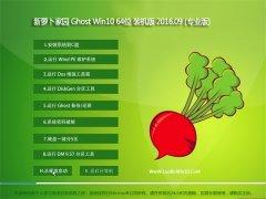 新萝卜家园 Ghost Win10 64位 专业版 2016V09