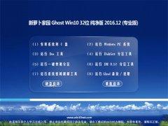 新萝卜家园Ghost Win10 X32位 安全纯净版V2016.12月(激活版)
