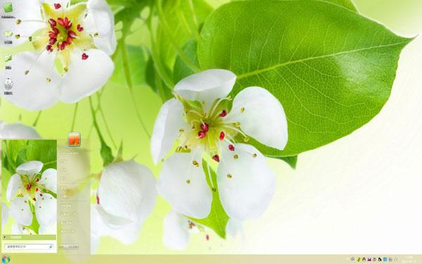 白花绿叶W8主题