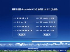 新萝卜家园Ghost Win10 X32 专业版 v201612(永久激活)