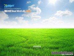 雨林木风Ghost Win10x86 官方专业版 v2019.05月(自动激活)