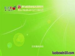 新萝卜家园Ghost Win10 X64 快速专业版 V2019年05月(无需激活)