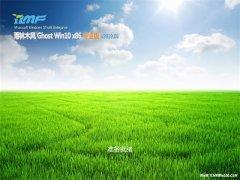 雨林木风Ghost Win10x86 安全专业版 2019v06(免激活)